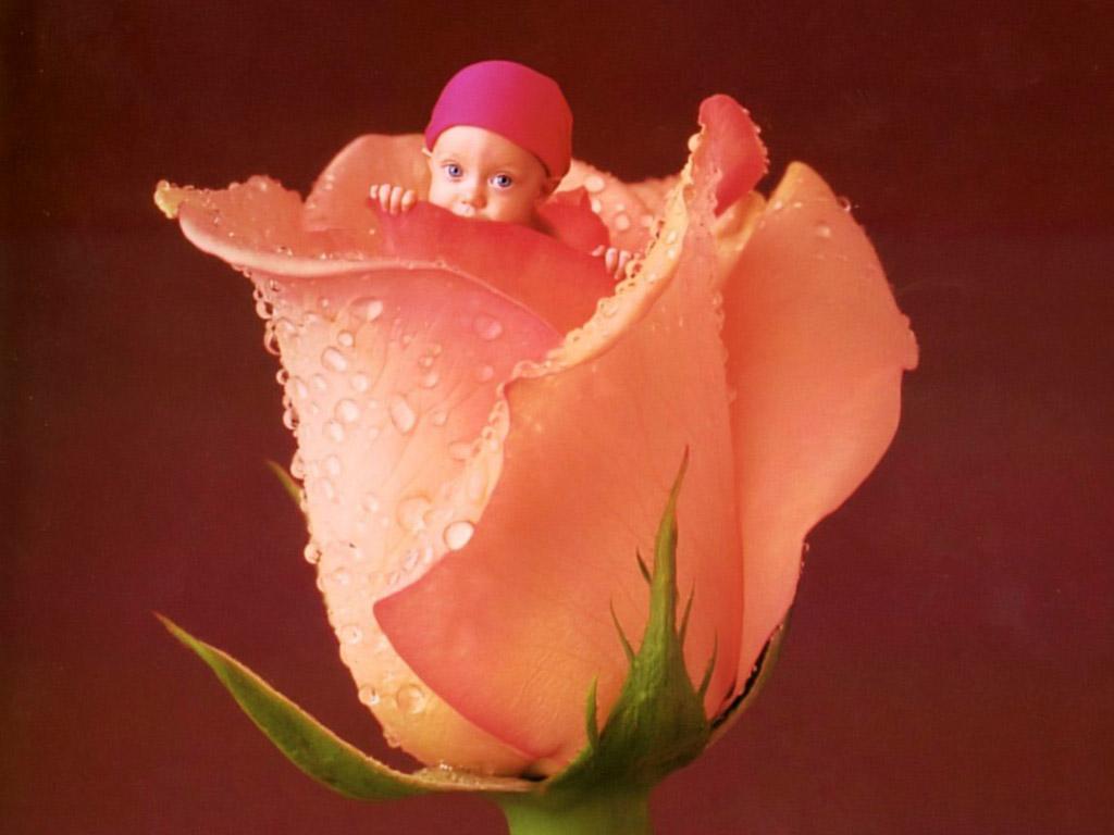 Дети цветы жизни поздравление